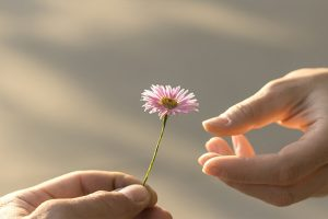 donare e ricevere amore